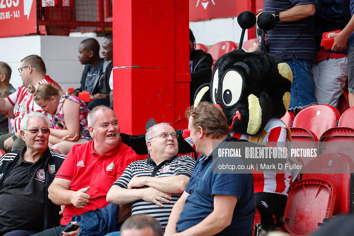 14:41:41 Bournemouth Bees Fans Buzz Bee